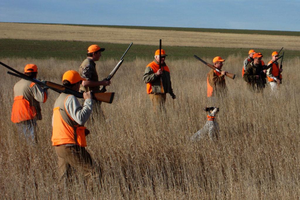 pheasant hunting Farm Bill 2018
